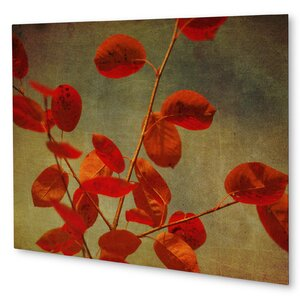 'October Curtain Call' Photographic Print on Wood by KAVKA DESIGNS
