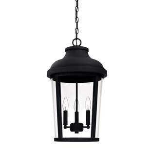Best Castor 3-Light Outdoor Hanging Lantern By Alcott Hill