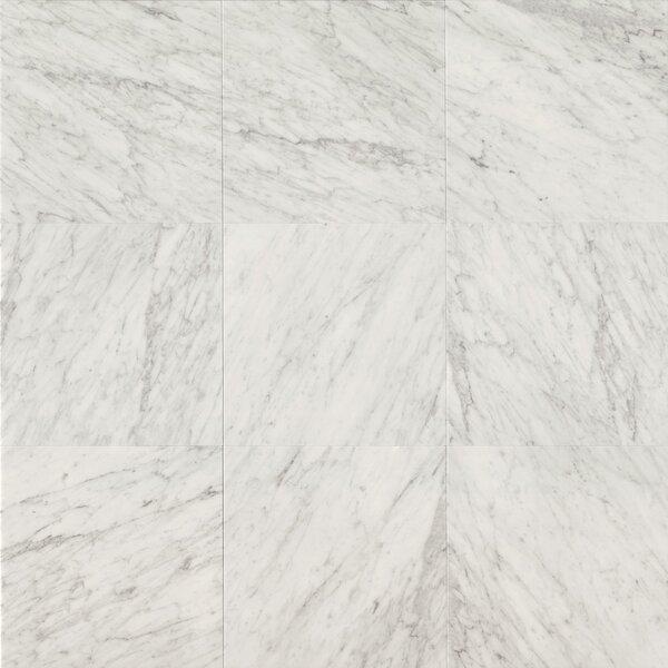 Bedrosians Honed 18 x 18 Marble Field Tile in White Carrara by Bedrosians