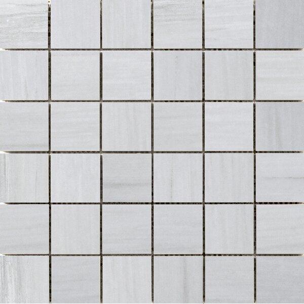 Latitude 2 x 2 Porcelain Mosaic Tile in Gray by Emser Tile