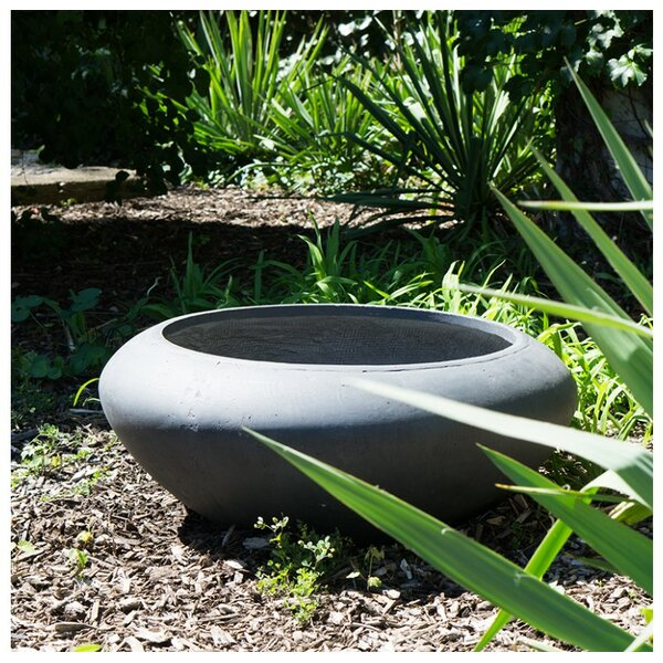 Sahara Clay Pot Planter by Gold Leaf Design Group