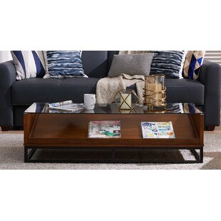 Zariah Coffee Table with Display Storage Millwood Pines