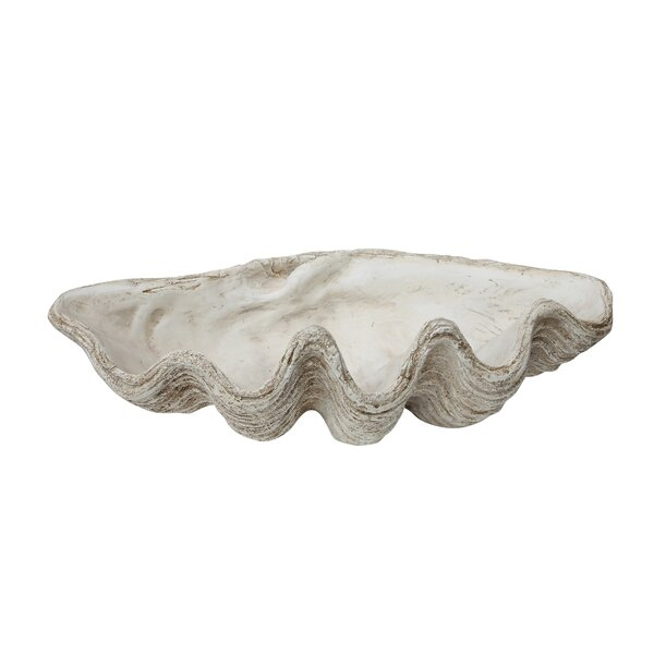 Matteo Decorative Seashell Sculpture by Beachcrest Home
