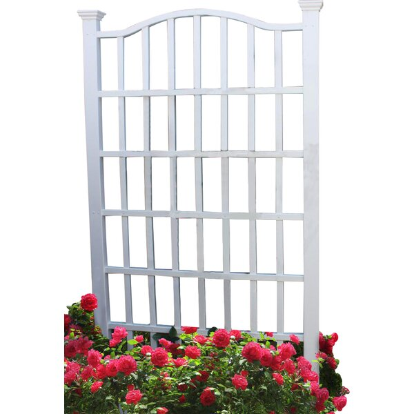 Roxbury Grande Vinyl Trellis by Darby Home Co