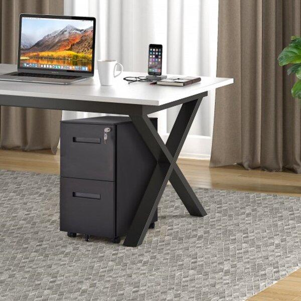 2 -Drawer Filing Storage Cabinet