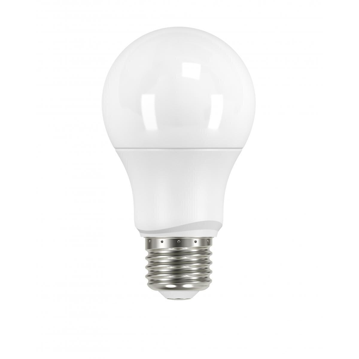 B8 Light Bulbs Joss Main