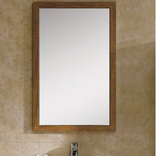 Langley Street Emerson Accent Mirror