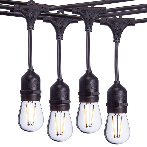 Gehring 48' Outdoor LED 15 - Bulb Standard String Light by Williston Forge