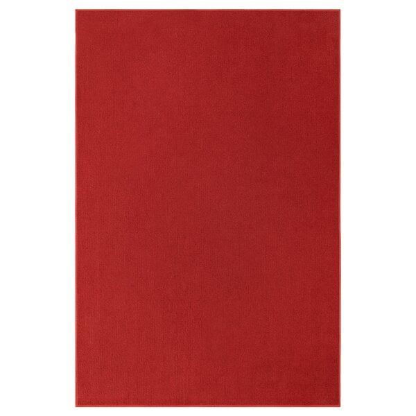 Erimentha Braided Red Area Rug