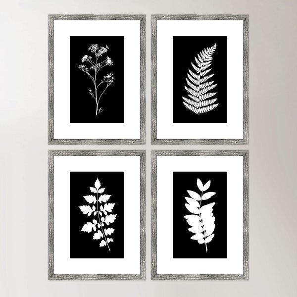 Impressions Framed Prints (Set of 4) by Birch Lane™