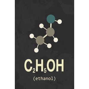 'Molecular Formula Series: Ethanol' By Type Like  Graphic Art Print on Wrapped Canvas by East Urban Home