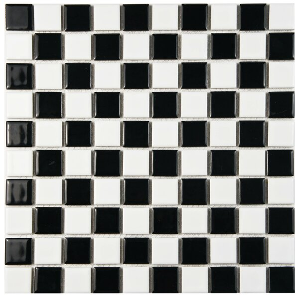 Derecha 1 x 1 Porcelain Mosaic Tile in Black/White by EliteTile