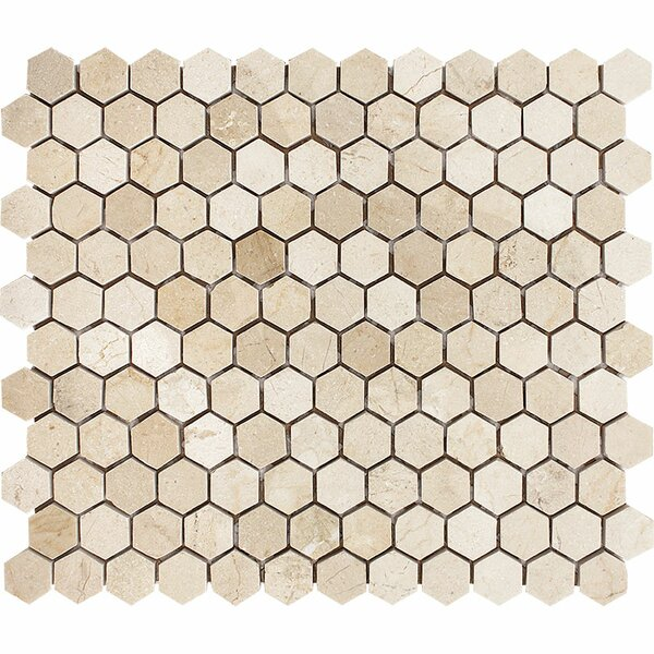 Crema Marfil Hexagon 1 x 1 Stone Mosaic Tile Polished by Parvatile