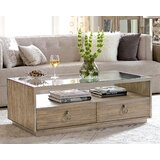 Ceniceros Solid Coffee Table with Storage by Brayden Studio®