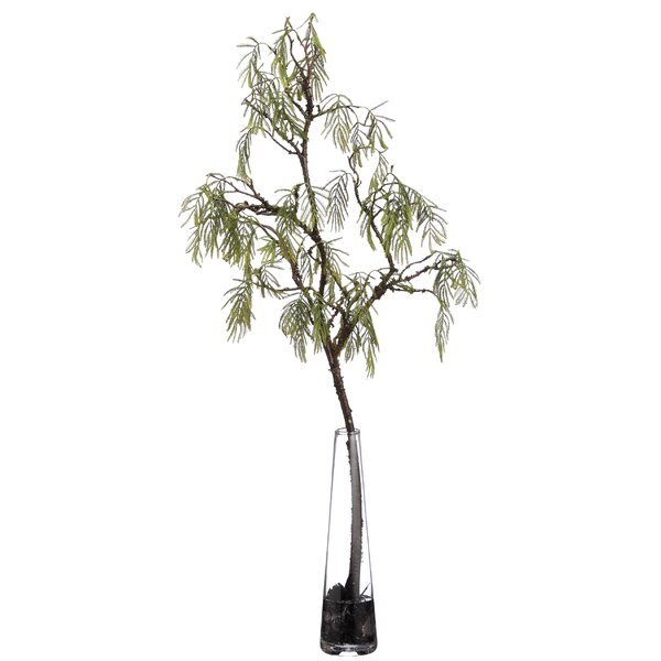Acacia Branch Foliage Tree in Decorative Vase by L