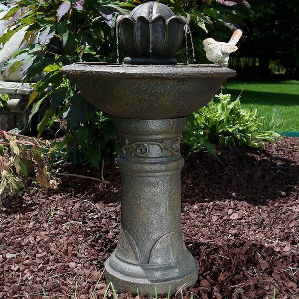Mira Fiberglass Blooming Birdbath Water Fountain by Alcott Hill