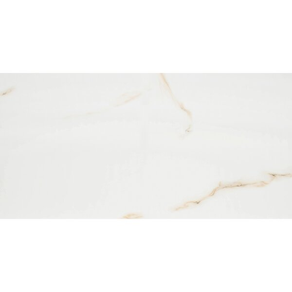 Aria Bianco 24 x 48 Porcelain Field Tile in White by MSI