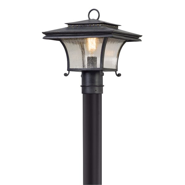 Colesville Outdoor 1-Light Lantern Head by Fleur De Lis Living