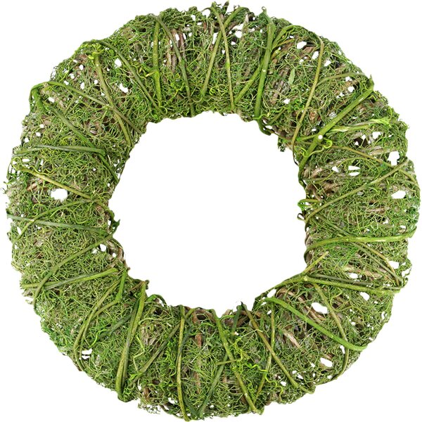 Moss and Vine Artificial Spring Wreath by Northlight Seasonal