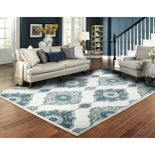 home goods rugs wayfair