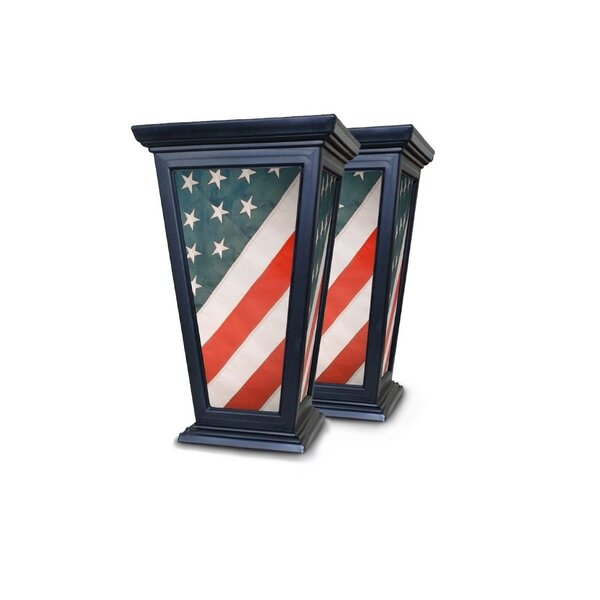 American Flag Patriotic Self-Watering Plastic Planter Box (Set of 2) by August Grove