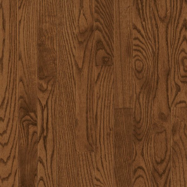 Manchester 3.25 Solid Red Oak Hardwood Flooring in Caramel by Bruce Flooring