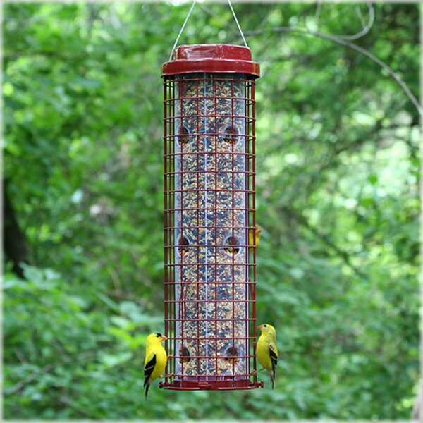 Easy Caged Tube Bird Feeder by Perky Pet