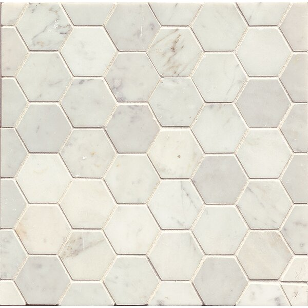 Hexagon Marble Polished Mosaic Tile in White Carrara by Grayson Martin