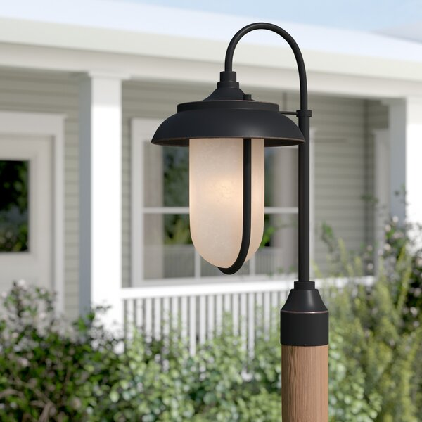 Bentleyville Outdoor 1-Light LED Lantern Head by Gracie Oaks