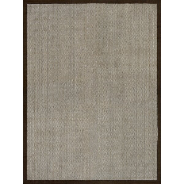 Richter Hand Woven Gray/Brown Area Rug by Alcott Hill