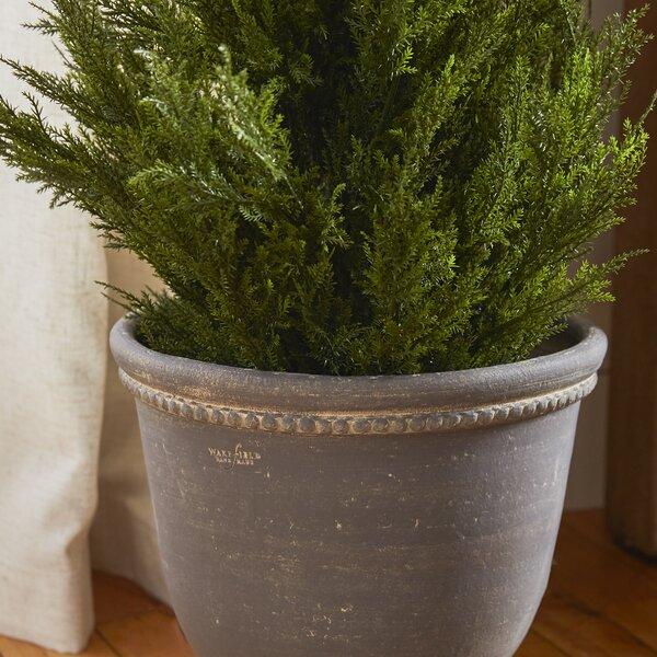 Amd Round Gray Terracotta Pot Planter by One Allium Way