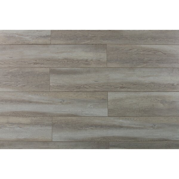 Abdiel Arjuna 7.72 x 47.83 x 12.3mm Laminate Flooring in Brown by Serradon