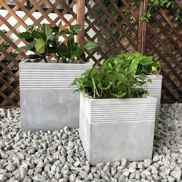 Gaines 3-Piece Planter Box Set by Williston Forge