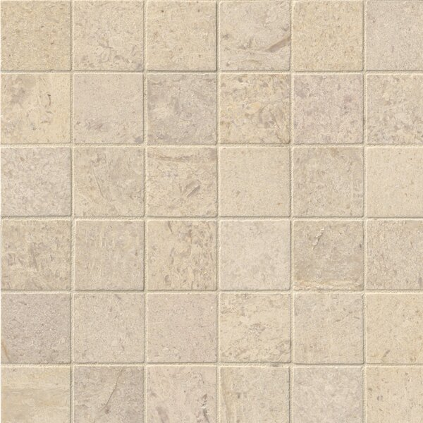 Honed 2 x 2 Limestone Mosaic Tile in Beige by MSI