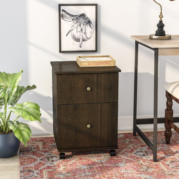 Beaver Creek 2 Drawer Mobile Vertical Filing Cabinet by Andover Mills