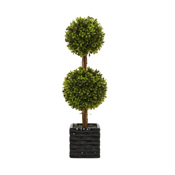 Faux Desktop Boxwood Topiary in Cube Pot by Darby Home Co