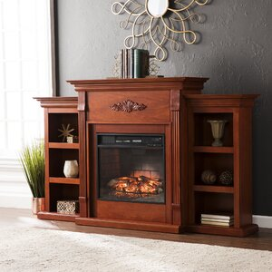 Hewitt Infrared with Bookcases Electric Fireplace by Astoria Grand