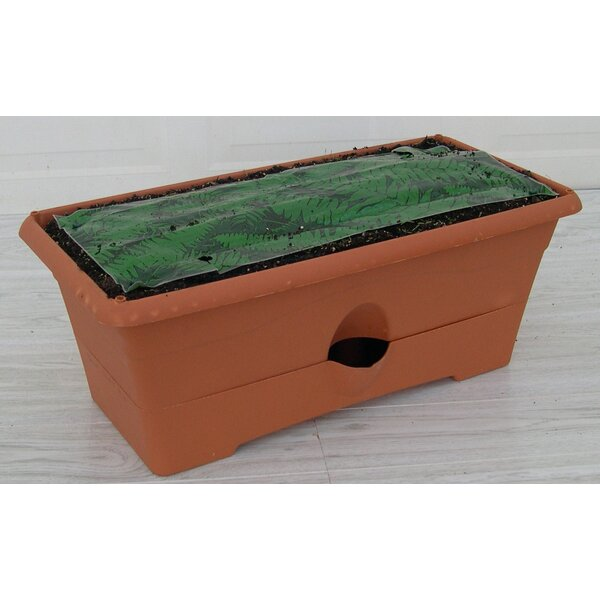 Ceramic Planter Box (Set of 6) by Garden Patch
