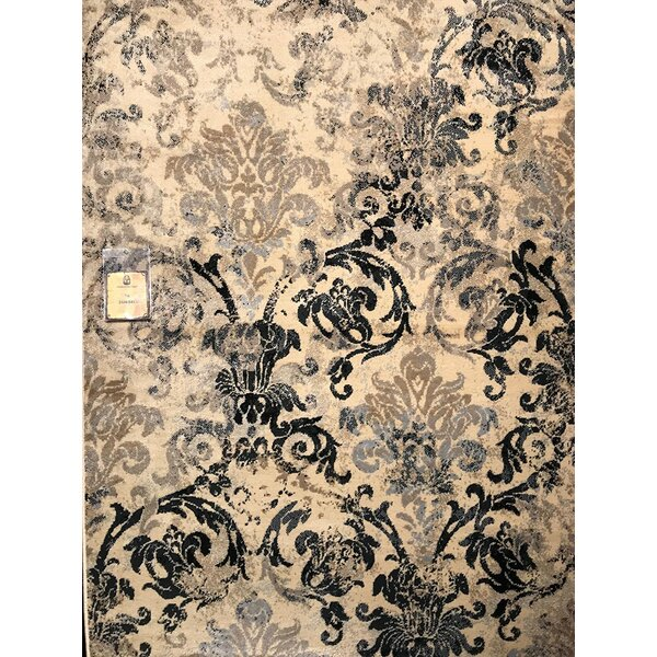 Singh Black/Beige Indoor/Outdoor Area Rug by Fleur De Lis Living