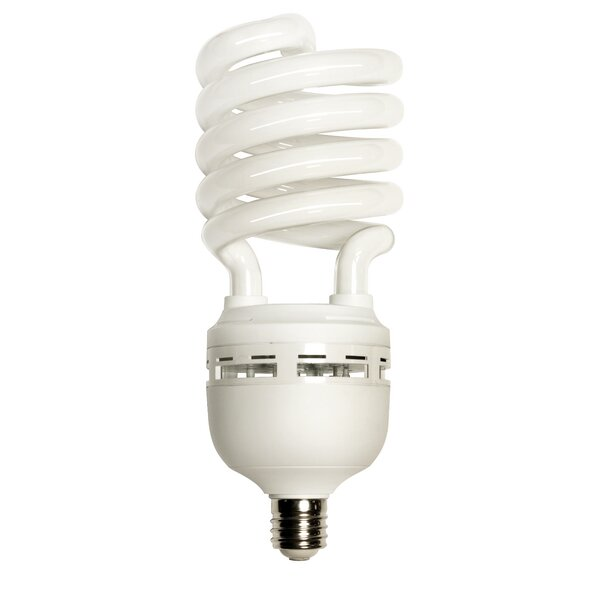 65W 120-Volt Fluorescent Light Bulb by Energetic Lighting