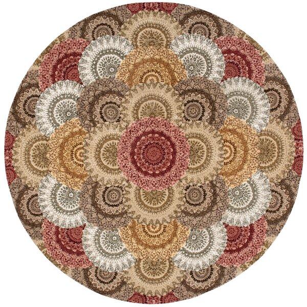 Dunbury Hand Woven Wool Beige/Gray Indoor Area Rug by Bloomsbury Market
