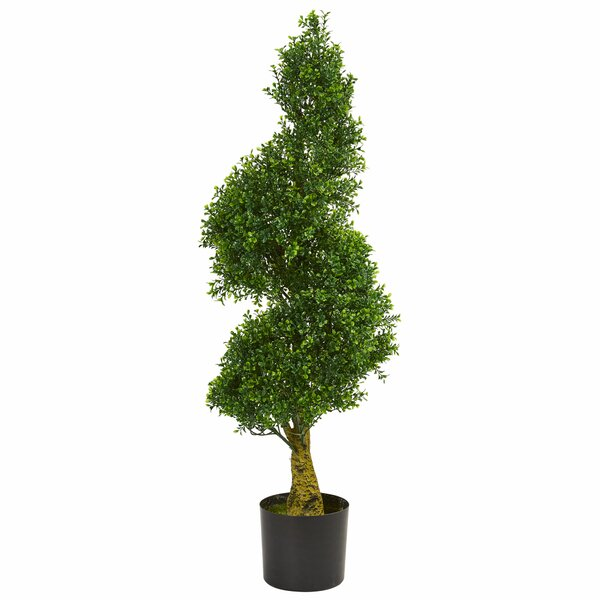 4 Spiral Boxwood Topiary by Darby Home Co