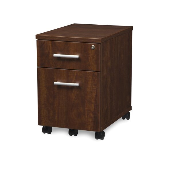 Gerth Locking Pedestal 2-Drawer Mobile Vertical Filing Cabinet by Ebern Designs