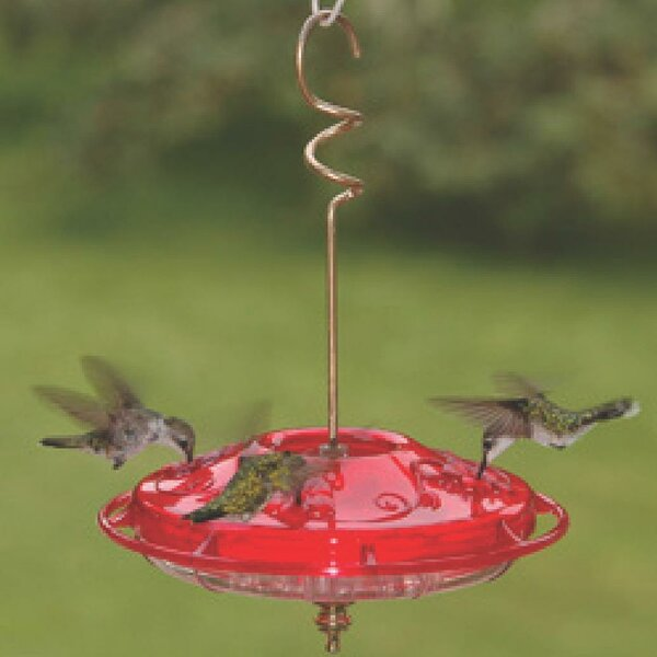 Hummzinger Fancy Hummingbird Feeder by Aspects Inc