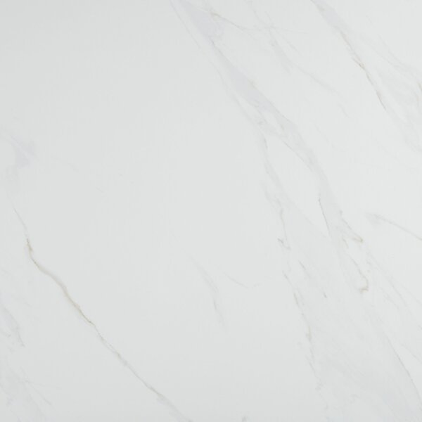 Florentine 24 x 24 Porcelain Field Tile in Carrara by Daltile