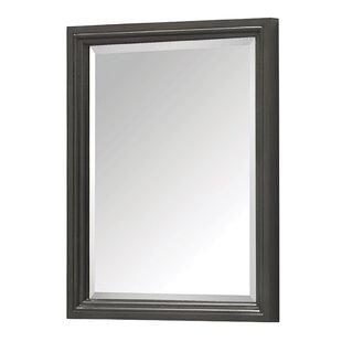 Gracie Oaks Samoset Accent Mirror
