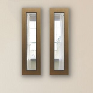 Darby Home Co Doylestown Panel Accent Mirror (Set of 2)