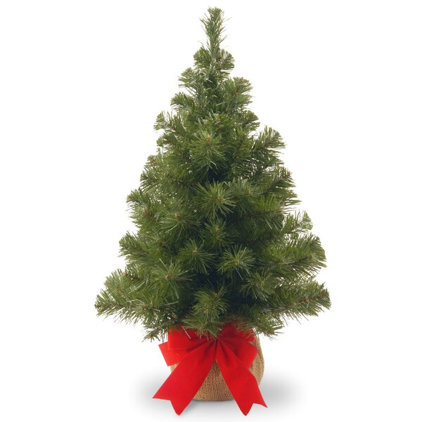 24 Green Spruce Artificial Christmas Tree by Laurel Foundry Modern Farmhouse