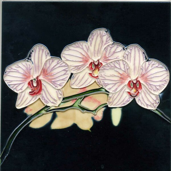 Three Lavender and White Striped Orchids with Black Background  Tile Wall Decor by Continental Art Center