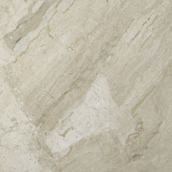 New Diana Reale 18 x 18 Marble Field Tile in Beige by MSI